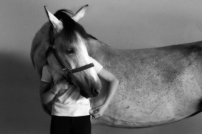 Eating horse @chateau d'Ygrande, France