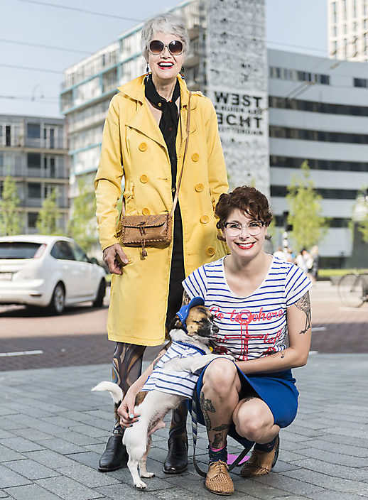 Dogs of Rotterdam