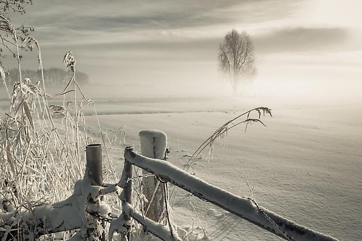 Winterlandschap in de Bommelerwaard