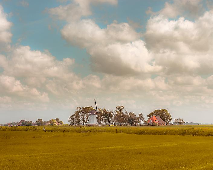 Fries landschap nabij Burdaard
