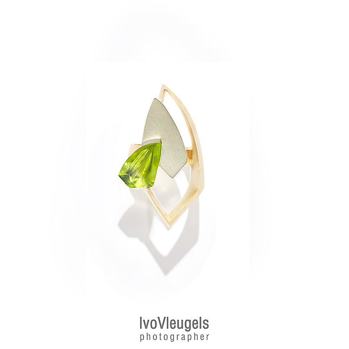 ©.2019 Ivo Vleugels-ring boven aanzicht 1e