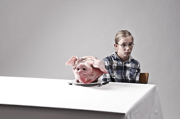 Diervriendelijk vlees
