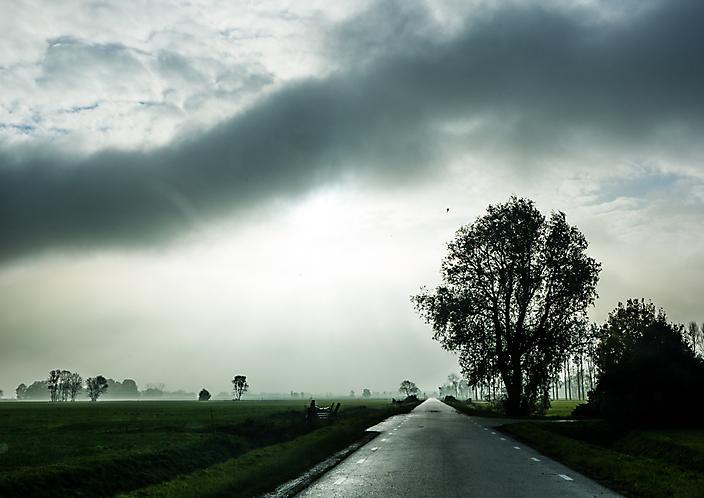 Landschap in tegenlicht