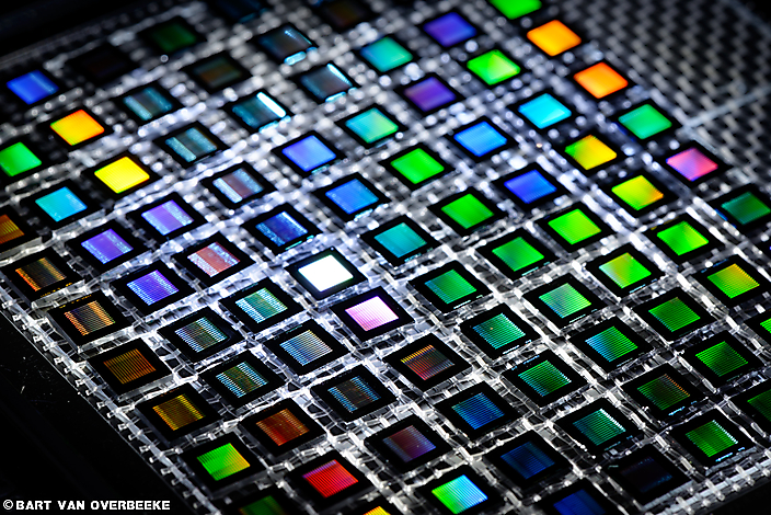 CCM chips