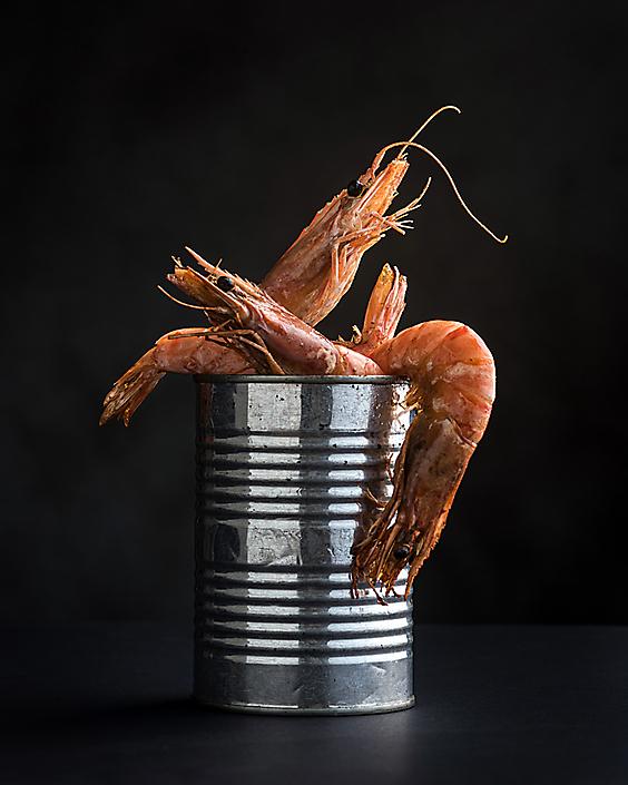 cannedshrimps