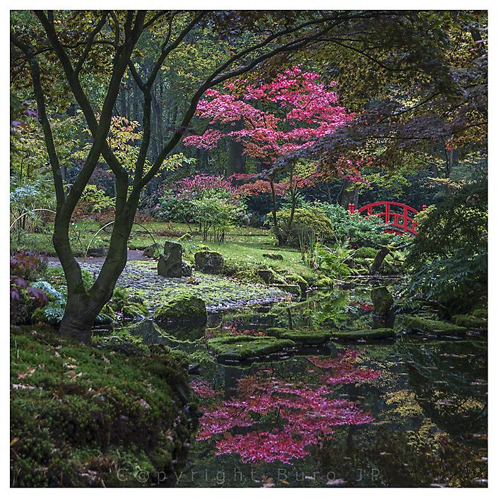 Tijdopname Japanse Tuin in Den Haag