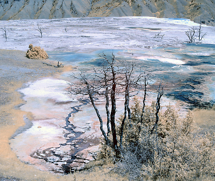 Yellowstone Infrared