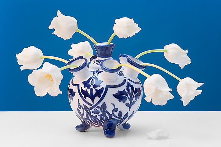 Serie: Flowers & Vases