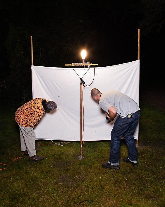 'Nachtvlindertelling', uit de serie Ekotripper