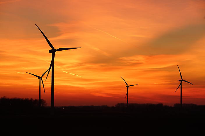 Windpark Terneuzen