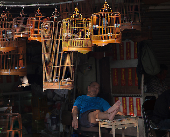 Reisfotografie: China town in Hong Kong kent haar eigen dynamiek