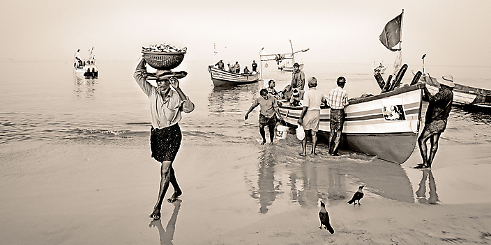 india-keralafishing