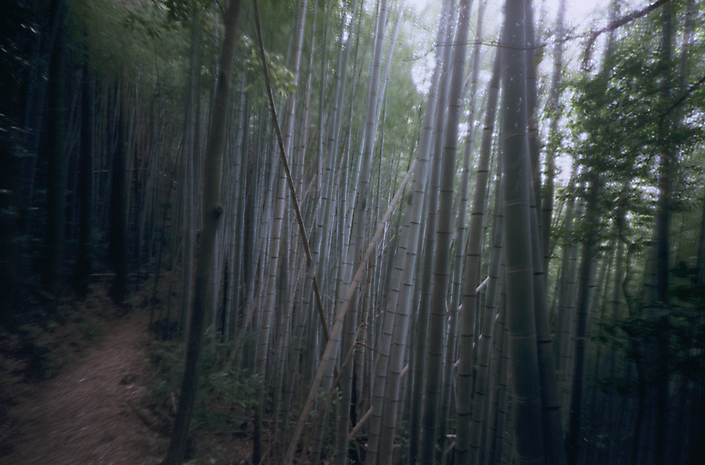 jap-blue bambookl