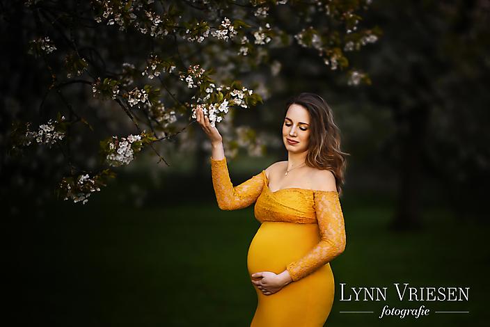 **Lisa van Hal - zwanger -23metlogo