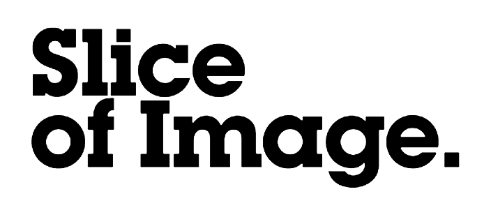 Logo Slice of Image