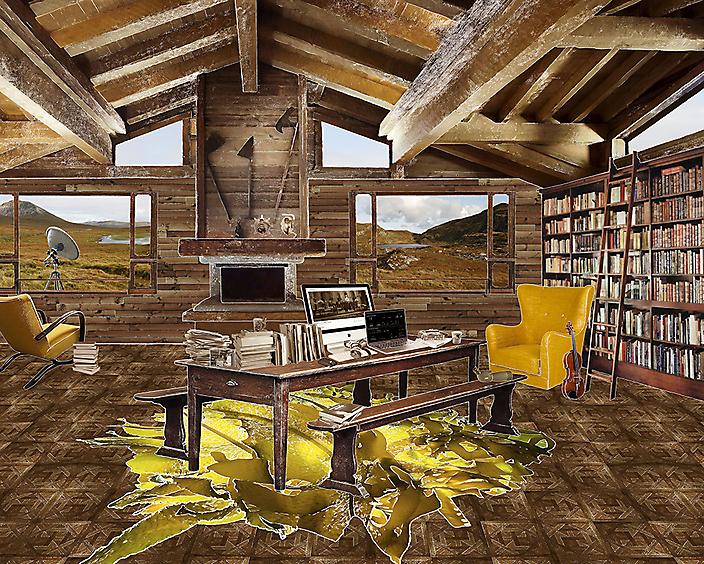 The room of wildlife recordist/ornithologist/author (Magnus Robb)