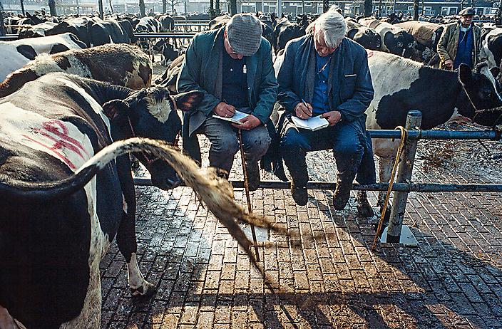uit het boek: Veemarkt Zwolle 1984-1987