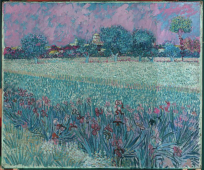 v Gogh Veld met Irissen-S0037-F0409_tijdens-vernisafname-falsecolor